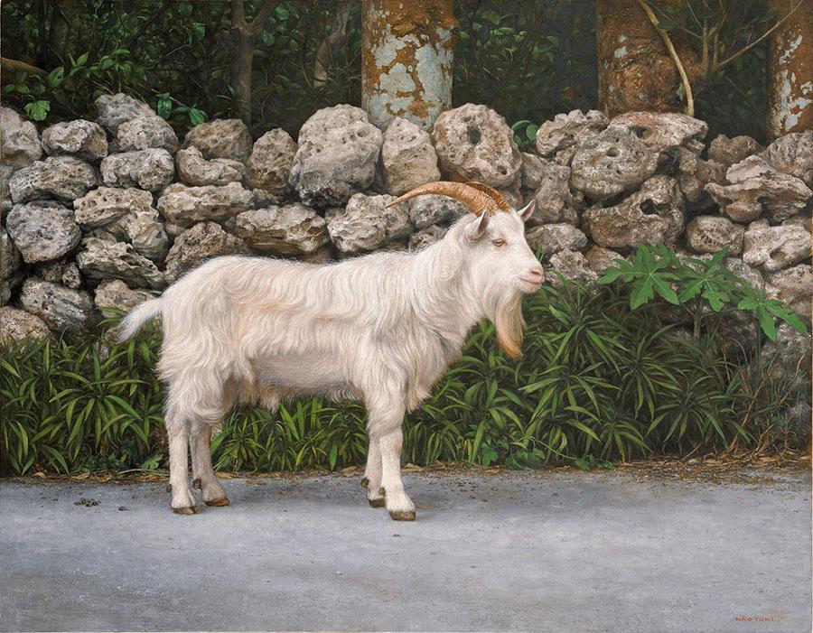 橋本直行 石垣と山羊