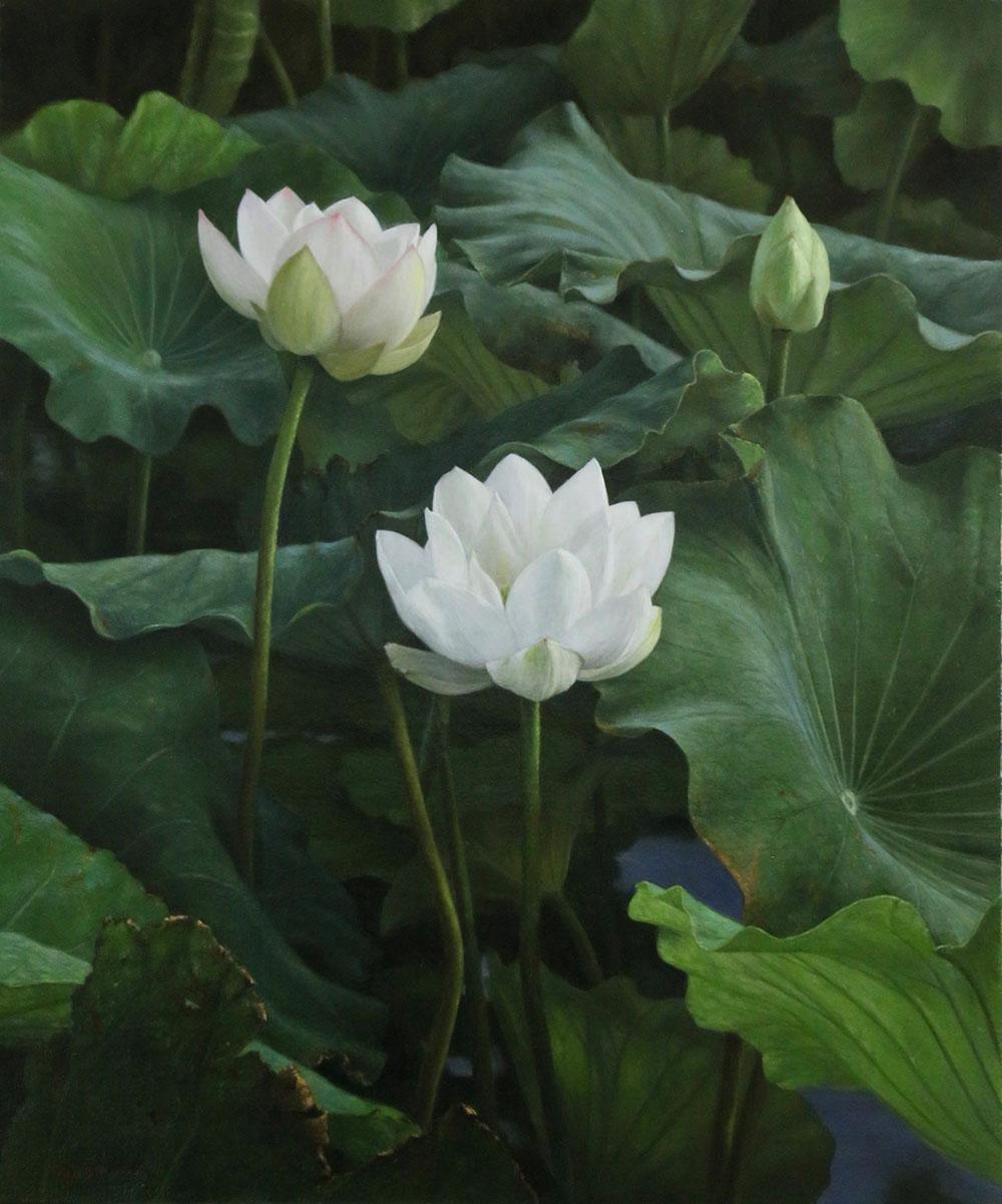 橋本直行|長岡市寺泊の画家|蓮